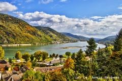 IMG_7103_Bacharach_Rhein