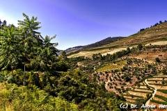 Portugal_4360