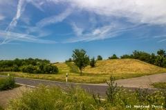 Landschaft bei Ilbesheim