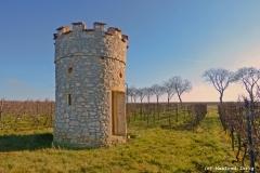 Weinbergturm bei Flörsheim Dalsheim als HDR 4