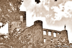 004_IMG_5946_Beilstein_hd_pencil_portrait